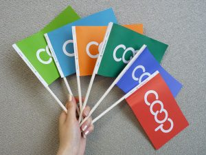 Co-op Paper Flags