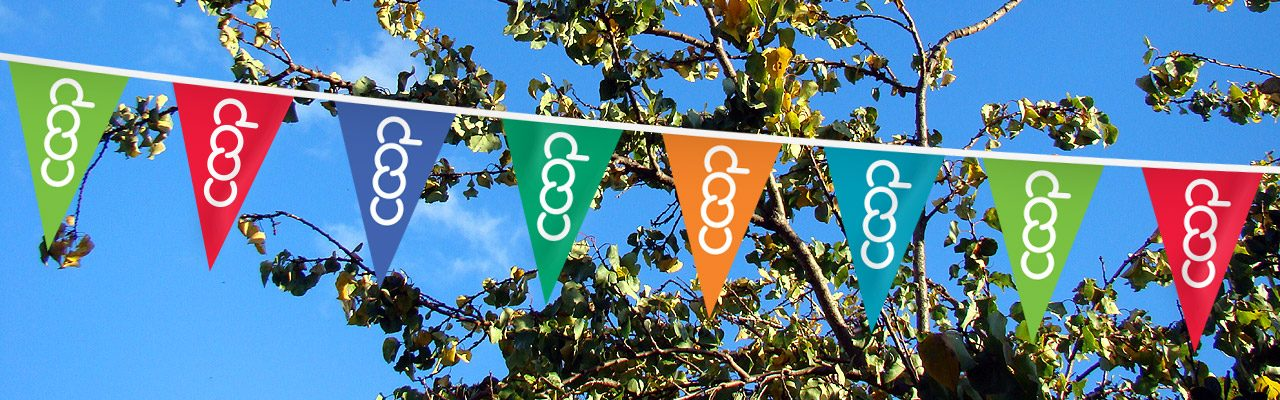 Co-op Pennant Strings